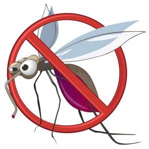 Illustration of a cartoon mosquito