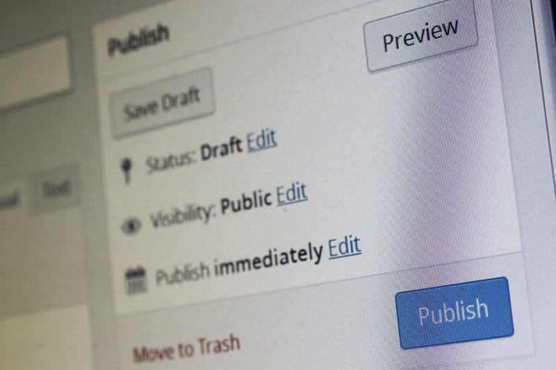 WordPress publish section in the backend.